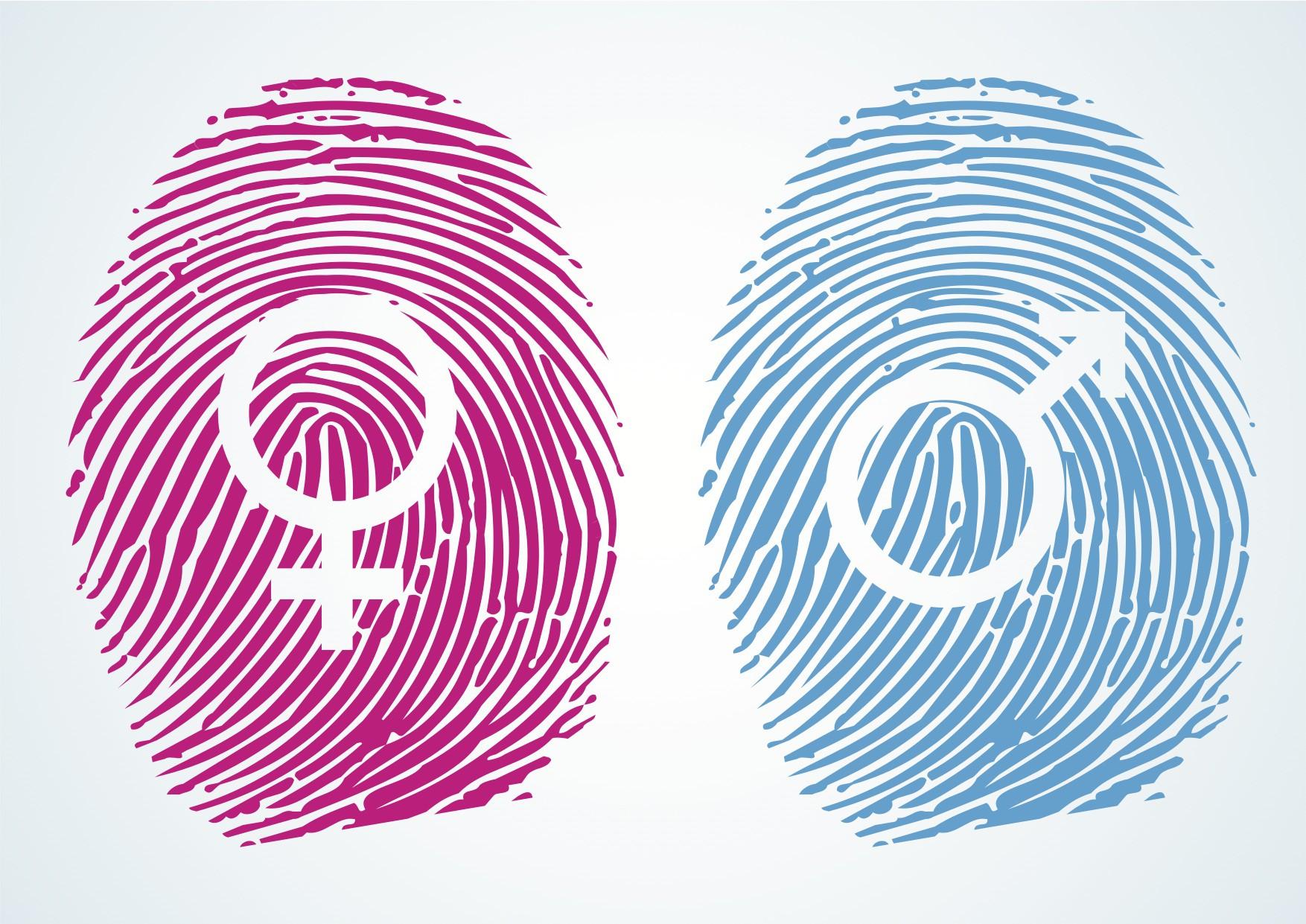 خشونت جنسیتی چیست؟